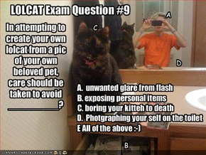 LOLCAT Exam Question #9