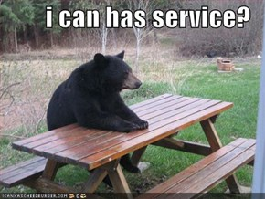 i can has service?