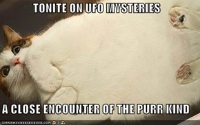 TONITE ON UFO MYSTERIES  A CLOSE ENCOUNTER OF THE PURR KIND