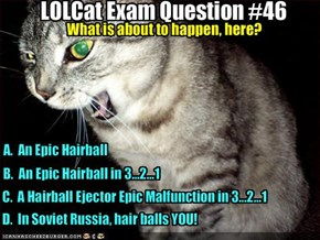 LOLCat Exam Question #46