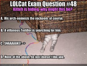 LOLCat Exam Question #48