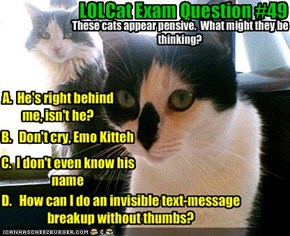 LOLCat Exam Question #49