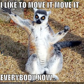 I LIKE TO MOVE IT MOVE IT  EVERYBODY NOW...