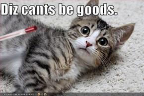 Diz cants be goods.