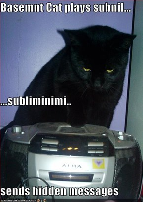 Basemnt Cat plays subnil... ...subliminimi.. sends hidden messages
