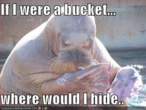 If I were a bucket...  where would I hide..