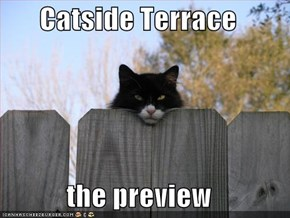 Catside Terrace  the preview