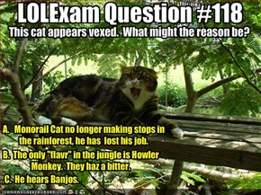 LOLExam Question #118