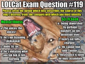 LOLCat Exam Question #119