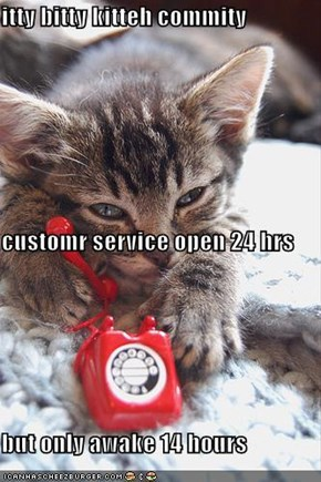 itty bitty kitteh commity customr service open 24 hrs but only awake 14 hours