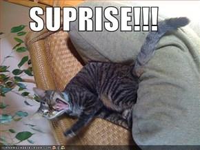 SUPRISE!!!