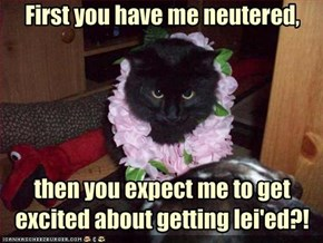 First you have me neutered,