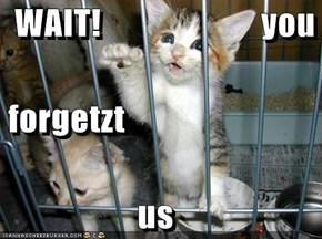 WAIT!                       you  forgetzt us