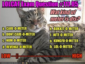 LOLCAT Exam Question #111.05