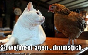 So we meet agen...drumstick.