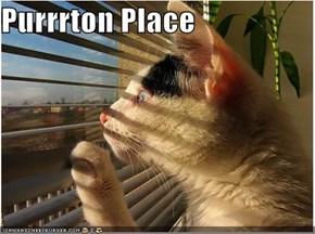 Purrrton Place