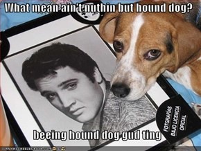 What mean ain't nuthin but hound dog?  beeing hound dog gud ting