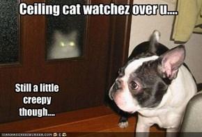 Ceiling cat watchez over u....