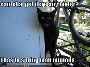 cantcha  get dere any faster?  i has to spring mah minions