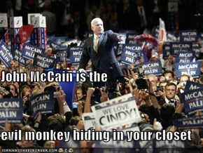 John McCain is the evil monkey hiding in your closet