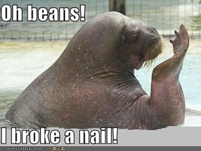 Oh beans!  I broke a nail!
