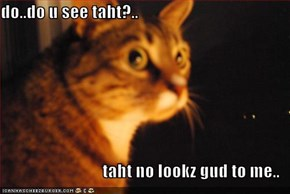 do..do u see taht?..  taht no lookz gud to me..