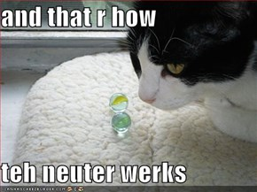 and that r how  teh neuter werks