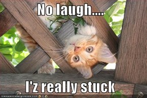 No laugh....  I'z really stuck