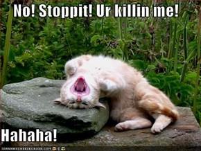 No! Stoppit! Ur killin me!  Hahaha!