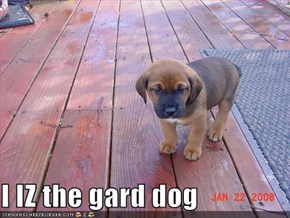 I IZ the gard dog