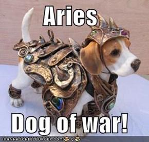 Aries  Dog of war!