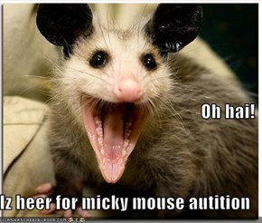 Oh hai! Iz heer for micky mouse autition