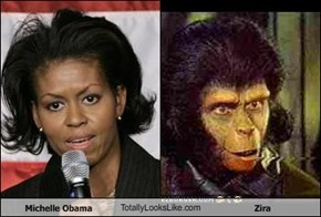 Michelle Obama TotallyLooksLike.com Zira