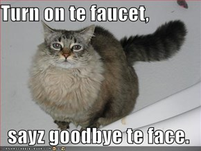 Turn on te faucet,  sayz goodbye te face.