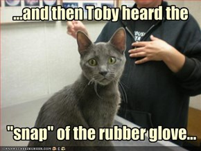 ...and then Toby heard the