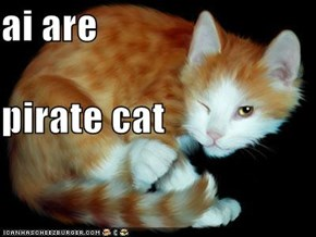 ai are pirate cat