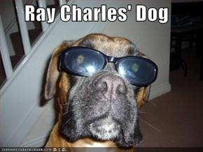 Ray Charles' Dog