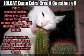 LOLCAT Exam Extra Credit Question #8