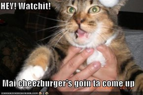 HEY! Watchit!  Mai cheezburger's goin ta come up