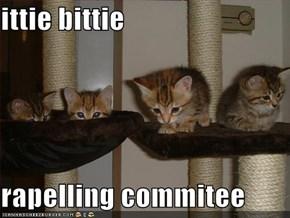 ittie bittie   rapelling commitee