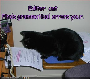 Editor  cat