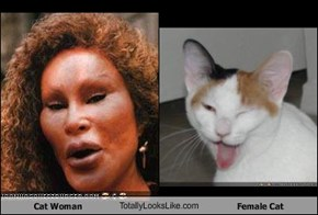 Cat Woman TotallyLooksLike.com Female Cat