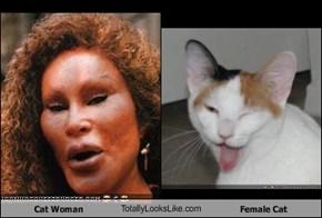Cat Woman TotallyLooksLike.com Female Cat