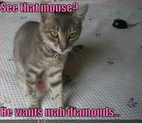 See that mouse?  He wants mah diamonds...