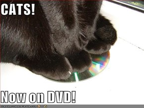CATS!  Now on DVD!