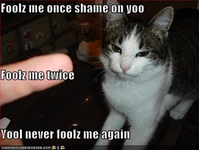 Foolz me once shame on yoo Foolz me twice Yool never foolz me again