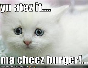 yu atez it....  ma cheez burger!...