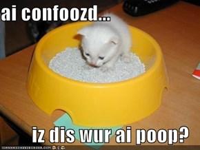ai confoozd...  iz dis wur ai poop?
