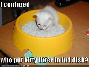 I confuzed  who put kitty litter in fud dish?