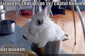 I iz pretty shur respe sez cupful hunneh  not bunneh